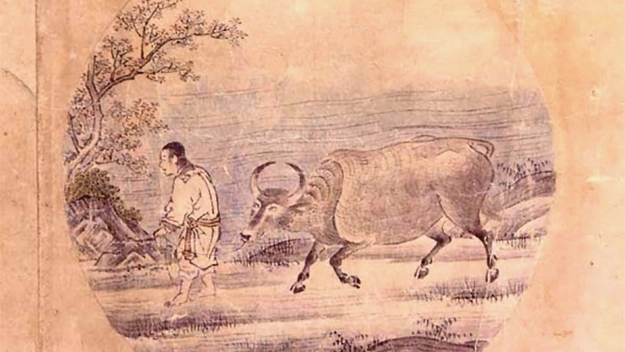 Histoire de Maître Isan